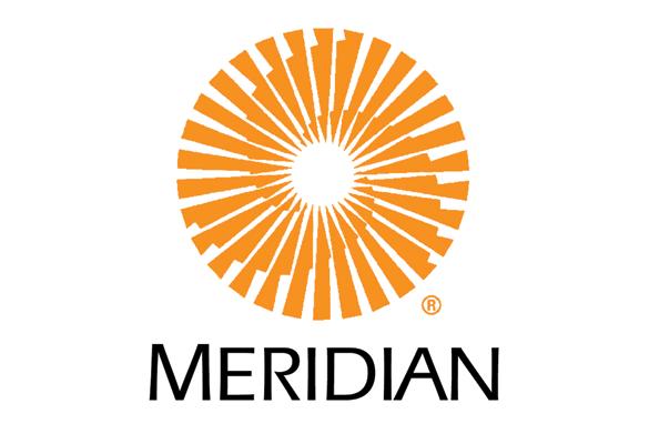 Meridian Data Leader Creative